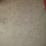 Teppichboden im Zimmer