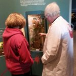 The staff takes the time to talk to you about the exhibits.. like getting a private lesson