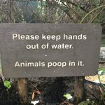 Funny sign in the open wetlands area.