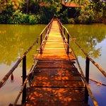Ashiyana' own Bridge