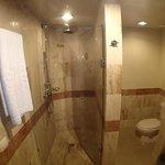 Bathroom had shower and Jaccuzi