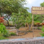 Makeo jogging trail is filled with unique tropical gardens