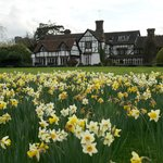 Spring at Ghyll Manor