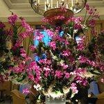 Lobby flower arrangement (gorgeous!!!)