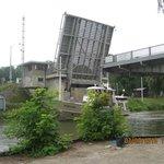 the elevated bridge