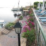 Terrace Above Nile