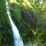 Horsetail Falls-Columbia River Gorge