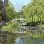 Monet's lilly pond 7