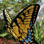 Tiger swallowtail Butterfly made with 37,481 bricks