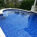 Adult Pool