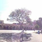 Panorámica del centro de Ciudad Guzmán