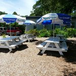 Picnic Area just outside of the park, so you can bing a picnic lunch or eat at the Flamingo Cafe