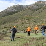 An upland hunt at Kessler.