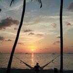 Hammock during sunset