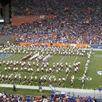 at one of the game - no luck for Gators!
