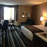 Bedroom, one queen, BEST WESTERN PLUS Winnipeg Airport Hotel  |  1715 Wellington Ave, Winnipeg,