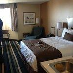 Bedroom, BEST WESTERN PLUS Winnipeg Airport Hotel     1715 Wellington Ave, Winnipeg, Manitoba