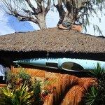 Foto de Baluarte de Argao Beach Resort
