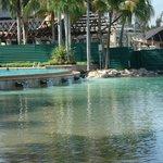 Canoe area
