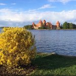 Trakai castle is just 30 minutes walking by the lake or 5 min by car