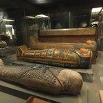 Mummies on display!