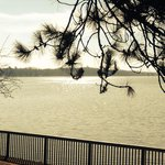 Early morning lake view