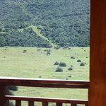 View from your bed in the Tranquillity (Honeymoon) suite.