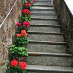 Charming Steps, Sorano