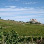 Parma hills with Torrechiara Castle