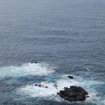 展望台からの太平洋