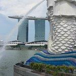 Aussenansicht vom Singapore lion gesehen