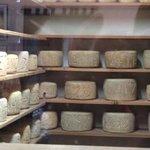 Bruny Island Cheese shop