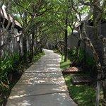 L'accès aux villas