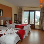 Deluxe twin room with mountian view