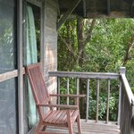 Treehouse house
