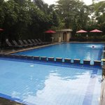 Novotel swimming pool