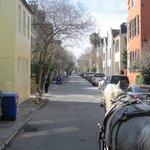 Palmetto Carriage tour, Charleston, SC