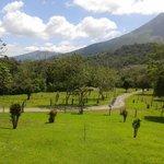 Property Trails
