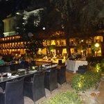 jardin et restaurant