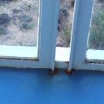 balkon renovierungsbefürtig