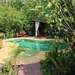 la piscine et l'espace repas