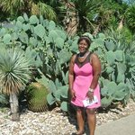 i found the cactus.