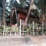 Beach front hut
