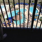 Pool from room but scared of heights :)