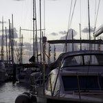 Marina sunset by David Burge Photography