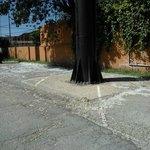 Zona de acceso peatonal