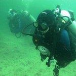 ME diving !