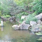 Water fall in Asian garden
