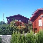 Photo of Madeira Sunset Cottage