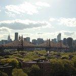 Vista de Manhattan desde el techo del SleepInn Long Island